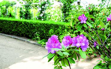 Jardin municipal Christian Dior