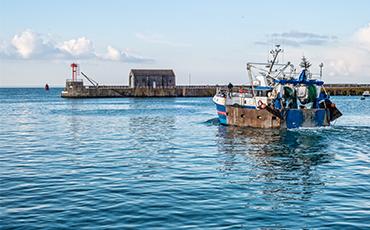 Pêche en baie de Granville : les négociations avancent. ©Benoit.Croisy - Coll. Ville de Granville