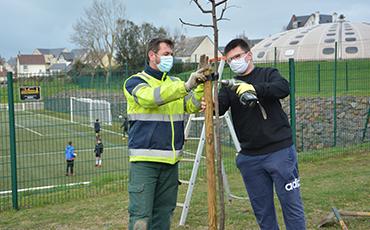 Au total, 270 arbres et arbustes seront plantés à Granville cette année. ©Flora.Gelot